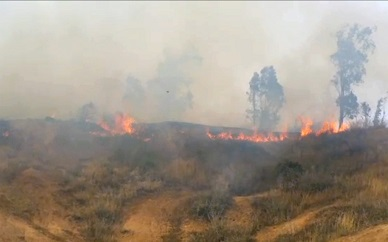 Palestinian 'fire kite' sparks massive blaze in Israeli fields along Gaza border